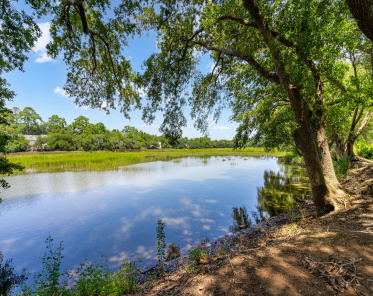 Point James Condos For Sale - 1402 Camp, Charleston, SC  - 1