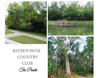 Rivertowne Country Club Homes For Sale - 1964 Creek, Mount Pleasant, SC  - 1