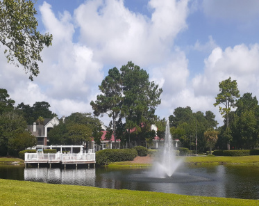 The Meridian Condos For Sale - 2011 Hwy 17, Mount Pleasant, SC  - 1