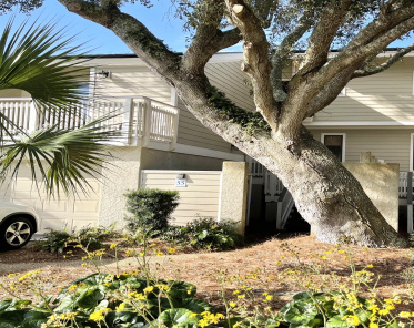 55 Fairway Dunes Isle of Palms, SC, 29451