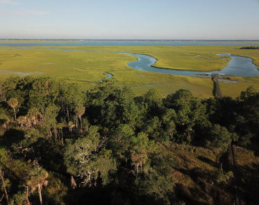 Dewees Island Homes For Sale - Lot 120 Old House, Dewees Island, SC  - 1