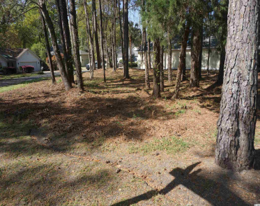 Lot 59 Redwing Ct. Pawleys Island, SC, 29585