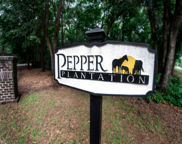 Pepper Plantation Lots For Sale - 0 Old Rosebud, Awendaw, SC  - 1